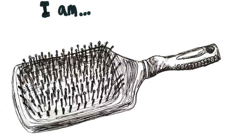 Confession of a hair-brush!