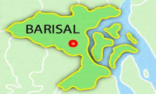Housewife 'commits suicide' in Barisal