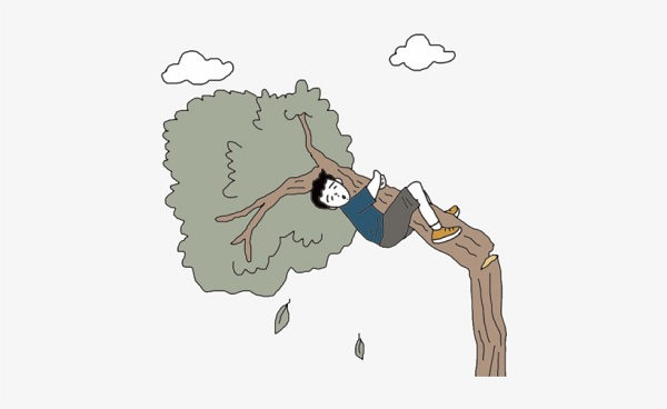 Man dies falling off tree in Netrakona