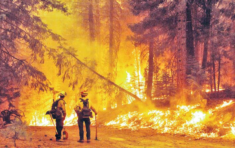 Firefighters look hapless as the Alisal Fire burns on October 12, 2021